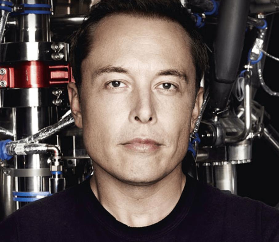 Master plan Elona Muska